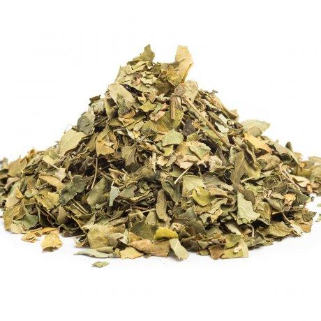 Moringa carribean, Moringa oleifera, moringa caj, moringa kozmetika, moringa učinky, moringa zdravie, mobake moringly, moringly, zdrave caje, superpotraviny, caj z moringy, moringa doplnky, caje proti startnutiu, čaje proti starnutiu